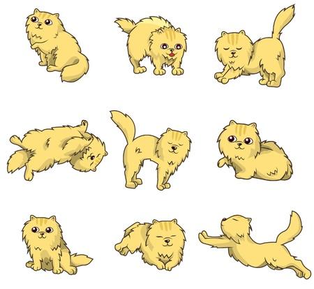 animal pussy: cartoon icon Illustration