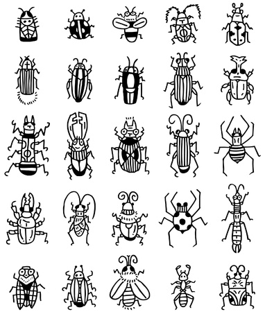 hand draw insect  icon Vector