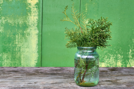 glass jar: Thuja twigs in a glass jar on the old table Stock Photo