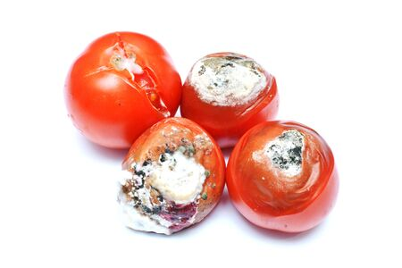 spoiled tomatoes isolated on white background