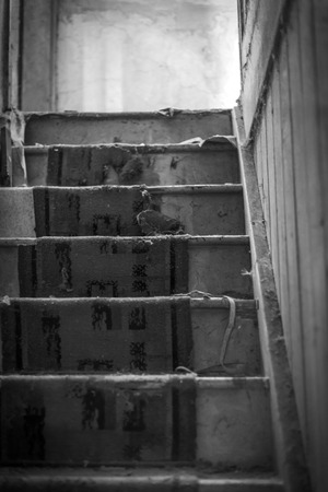 Stairs in an old abandoned house. Carpet is worn and falling appart in black and white Imagens