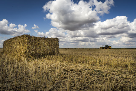 Main focus is on the freshly harvested, rectangular straw bale in the foreground. The tractor in the distance on the horizon looks weirdly small because of the low down and wide angle perspective. Striking blue sky with giant fluffy white clouds on a warm