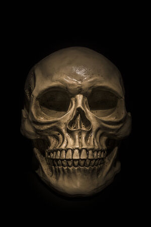 Spooky skull on black background. Great for halloween.