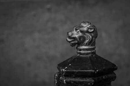 Close up of ornate, cast iron boot scraper with decorative lion head in black and white. Located at the servants entrance of a 17th Century stately home. Imagens