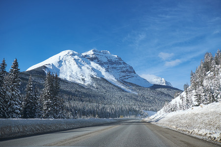 winter trees: empty open road at Banff Canada in winter with winter landscape Stock Photo