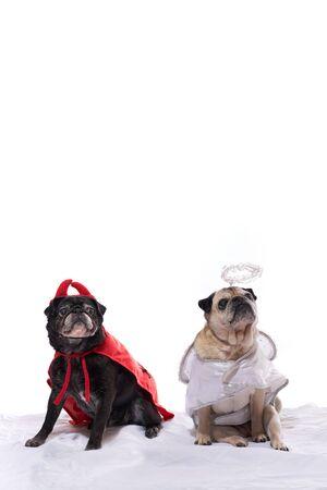 perros vestidos: Negro y del cervatillo del barro amasado perros vestidos con un traje de ángel y demonio