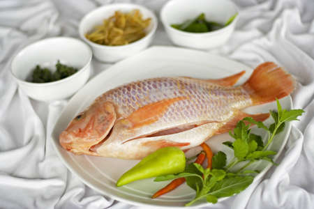 Ingredient for fish food Stock Photo