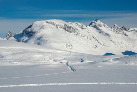 icefield: Relief of snow on icefield, Greenland Stock Photo
