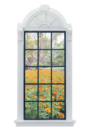 jardines flores: Modernas de la ventana y jardines de flores residenciales detr�s.