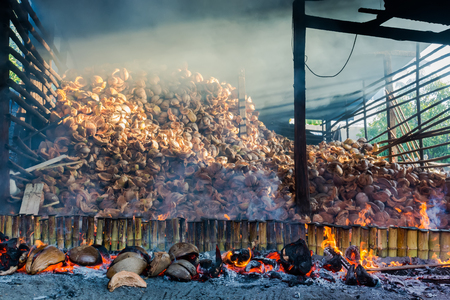 hotness: Bury the Thailand Lam gastronomy.