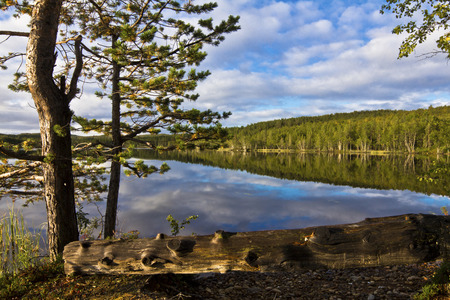 arctic waters: remote forest lake Stock Photo