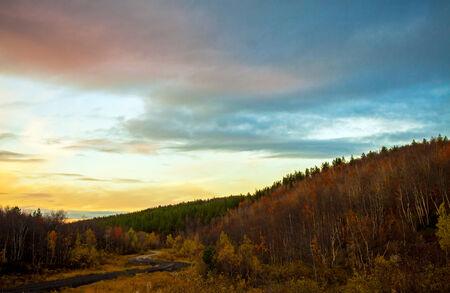 taiga: Forest road in autumn taiga at sunset