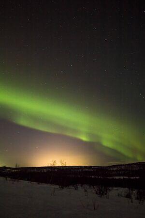 north star: Polar lights in the winter night sky