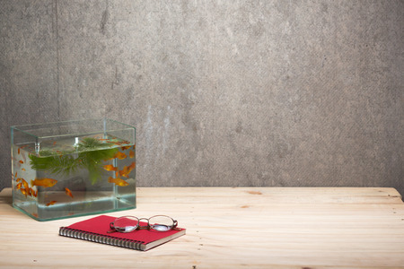 neon tetra: fish tank notebook and glasses on table wooden