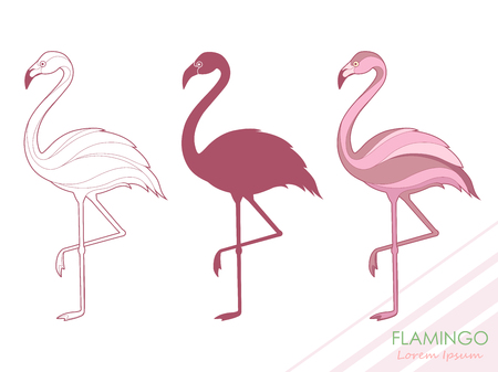 A set of flamingos. Silhouette of flamingos. A tropical bird. Vector illustration. Logo. Vettoriali