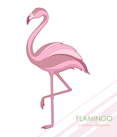 Flamingo. Silhouette of a flamingo. Vector illustration. Logo.