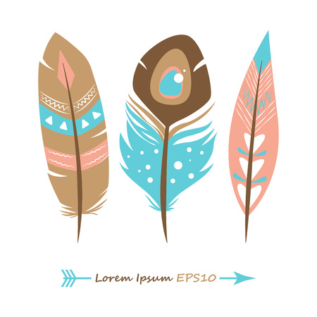 set of bird feathers. vector illustration. colored feathers