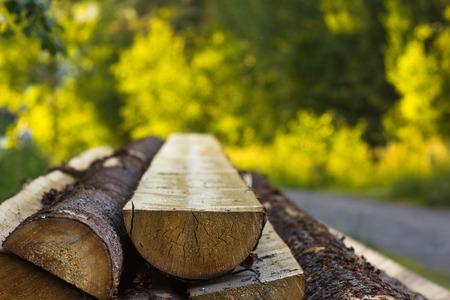 Logs cut in half on a beautiful blurred background