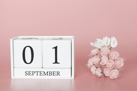 September 01st. Day 1 of month. Calendar cube on modern pink background, concept of bussines and an importent event.