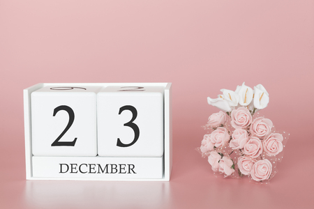 December 23rd. Day 23 of month. Calendar cube on modern pink background, concept of bussines and an importent event. Banco de Imagens - 121514638
