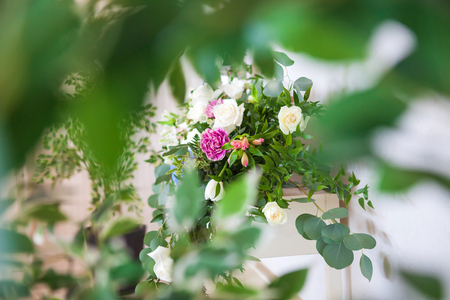Blurred front background of leaves, beautiful flowers in the background. Banco de Imagens