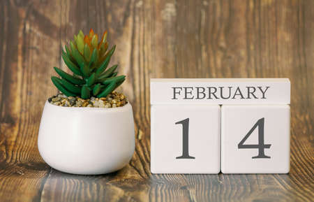 Flower pot and calendar for the snow season from 14 February. Winter time.