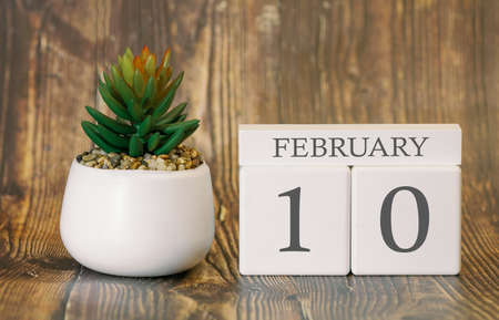 Flower pot and calendar for the snow season from 10 February. Winter time. Banco de Imagens