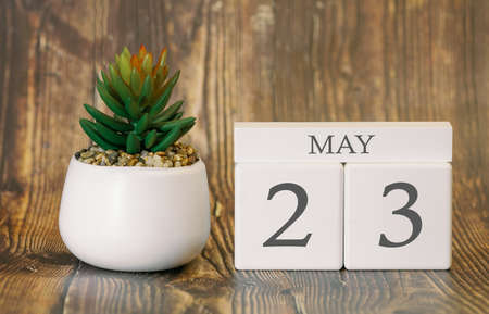 Flower pot and calendar for the warm season from 23 May. Spring time. Banco de Imagens