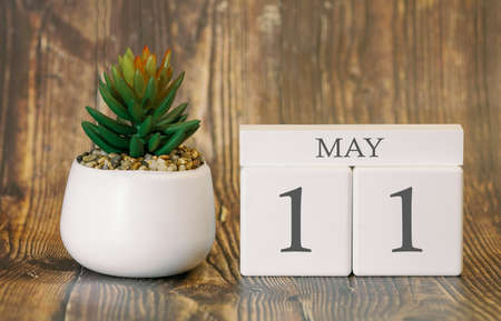 Flower pot and calendar for the warm season from 11 May. Spring time.