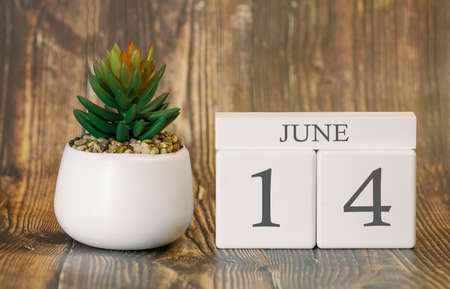 Flower pot and calendar for the warm season from 14 June. Summer time. Banco de Imagens