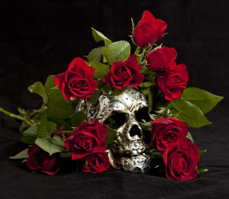 Skull surrounded by roses photo