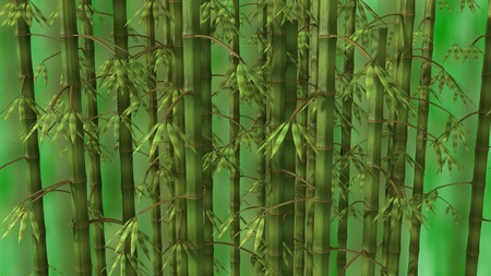 feng: Bamboo forest over green background