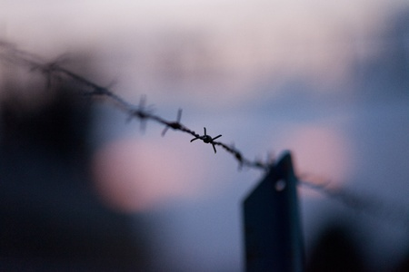 barb wire isolated: Barbwire on a fence