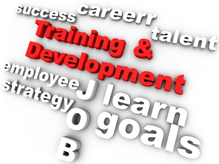 training and development in red surrounded by relevant words