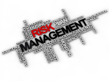 prioritization: risk management word cloud over white background