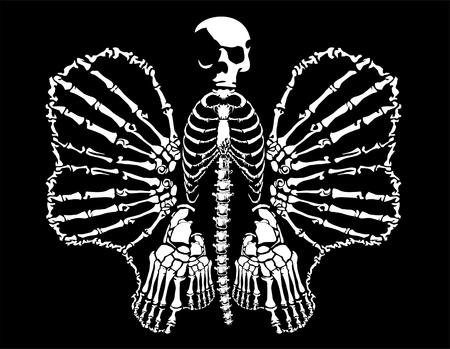 bone butterfly