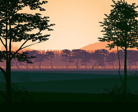 A high quality background of landscape with woods. Flat style. Ilustrace