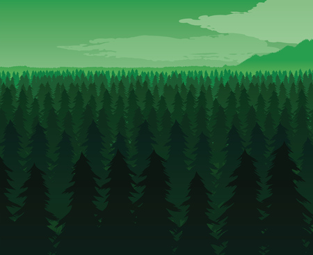 A high quality background of landscape with deep fir forest. Flat style. Ilustrace