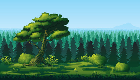 A high quality horizontal seamless background of landscape with deep fir forest.