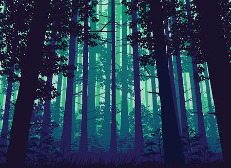深い森の風景の背景で高品質。フラット スタイル。 写真素材 - 70028161