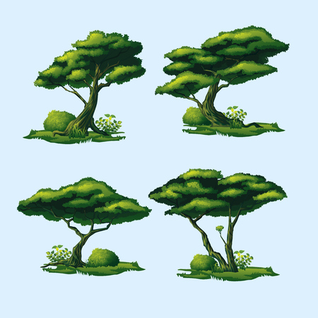 A high quality trees with a curved crown. Isolated set of four trees.