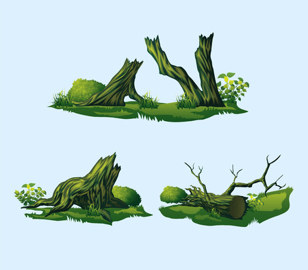 A high quality broken trees, stumps. Isolated set of four broken trees, stumps.