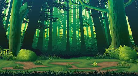 森と高品質水平シームレス背景 写真素材 - 72887283