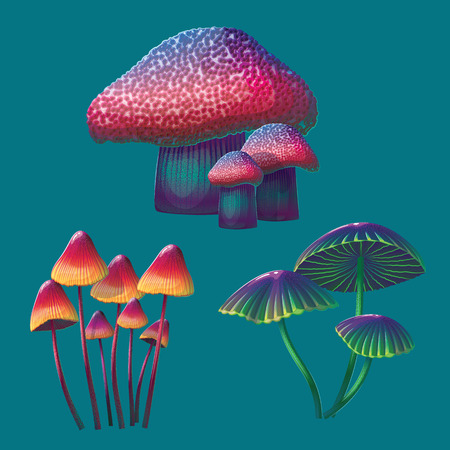 A high quality fantasy mushrooms set. Bright, cartoon, fantastic natural objects. Ilustrace