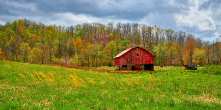 Red barn in a hay field with budding Spring trees in the background. Imagens