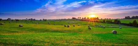 Round hay bails in a field at sunset.
