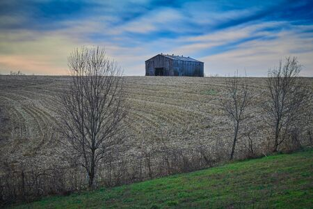 Old tobacco barn sitting in a harvested corn field.