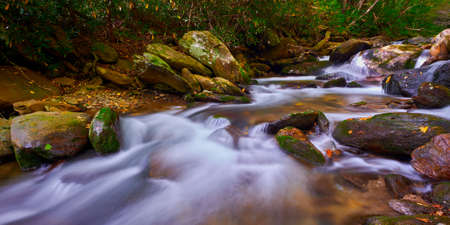 Curtis Creek near Curtis Creek Campground in the mountians of North Carolina.
