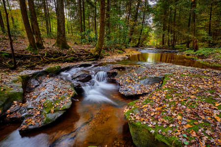 Large boulder along Flat Lick Creek near Gray Hawk, Kentucky.