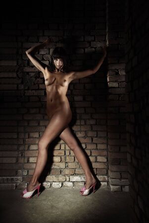 Naked lady in pink shoes standing near the brick wall Stock Photo - 4102657